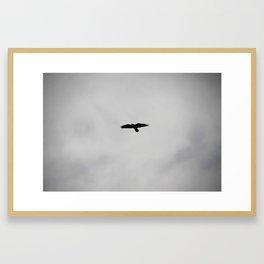 Flight 4 Framed Art Print