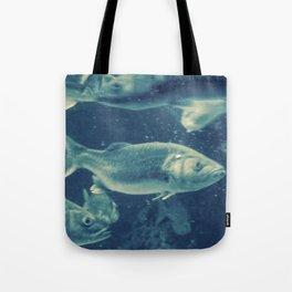 Fish 2 Tote Bag