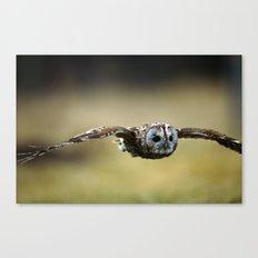 FLIGHT OF THE TAWNY OWL Canvas Print