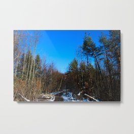 Winter sun is trying to melt the snow Metal Print