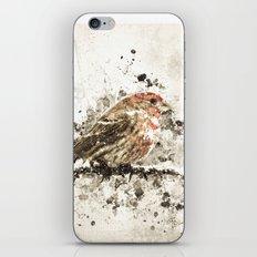 House Finch Splatter iPhone & iPod Skin