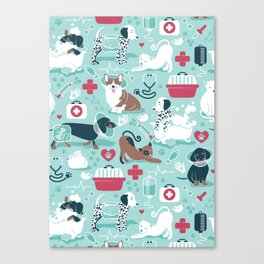 Veterinary medicine, happy and healthy friends // aqua background Canvas Print