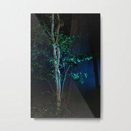 Tree at nignt Metal Print