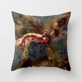 Hypselodoris maculosa Throw Pillow