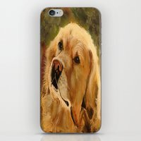 golden retriever iPhone & iPod Skins featuring Golden Retriever by Tidwell