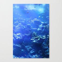 Tropical Aquarium Canvas Print