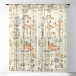 Mushroom Diagram // Champignons II XL by Adolphe Millot 19th Century Science Textbook Artwork Sheer Curtain