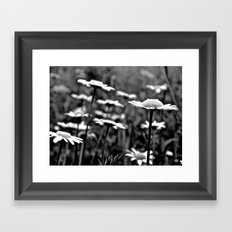 She's a Daisy Framed Art Print