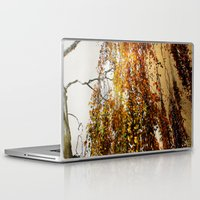 birch Laptop & iPad Skins featuring Birch by TakaTuka Photo