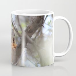 Chicken Strip Squirrel Coffee Mug
