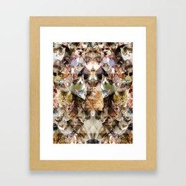 Cat Kaleidoscope Framed Art Print