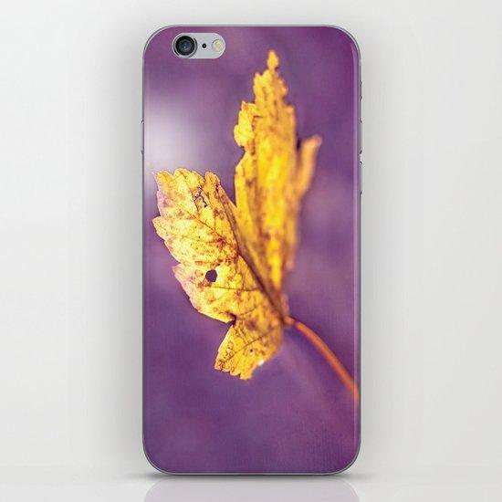 MAPLE iPhone & iPod Skin
