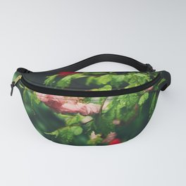 Cherry blossoms in the rain Fanny Pack