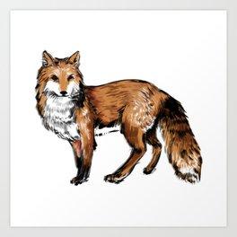 Brushed Fox Art Print