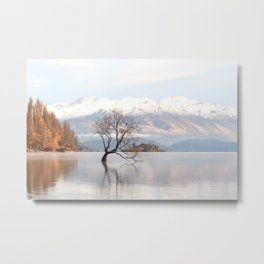 The Wanaka Tree Metal Print
