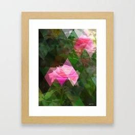 Pink Roses in Anzures 5 Art Triangles 1 Framed Art Print
