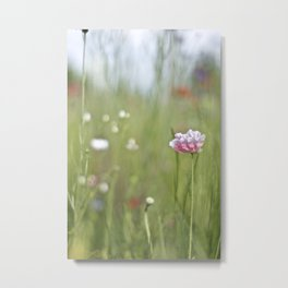 Flower Series 13 Metal Print