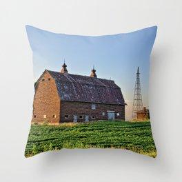 Summer Ventura Barn 2 Throw Pillow