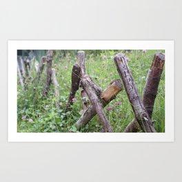 Cottage Fence Art Print
