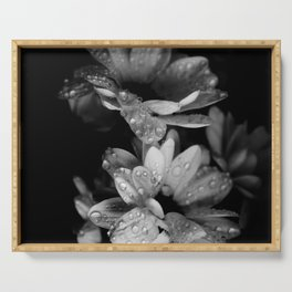 Flower and drops. Black and white. Serving Tray