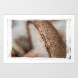 Mushroom #4 Art Print