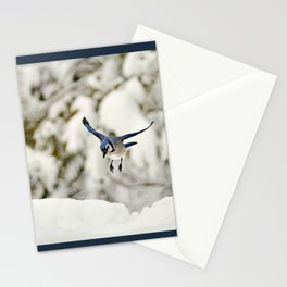 Blue Jay action Stationery Cards