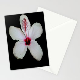 White Hibiscus Isolated on Black Background Stationery Cards