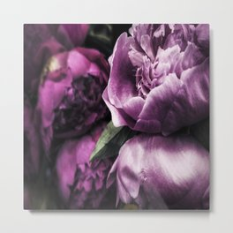 Peonies for Brenna Metal Print