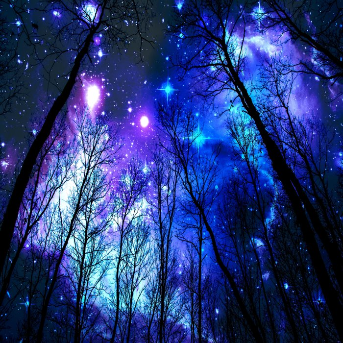 black trees purple blue space copyright protected Comforters