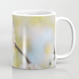 Pear Blossoms in spring. Coffee Mug