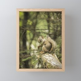 Who You Calling Squirrelly? Framed Mini Art Print
