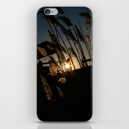 Sunset in the Fall iPhone Skin