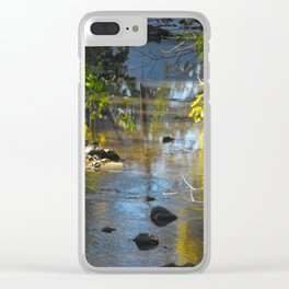 Calming stream 2012 Clear iPhone Case