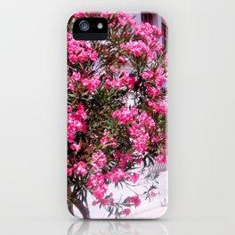 Greek Blush iPhone Case