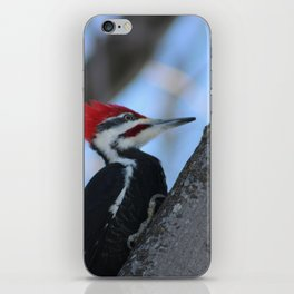 Wood Pecker iPhone Skin