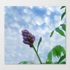 Sweet Beginning  Canvas Print