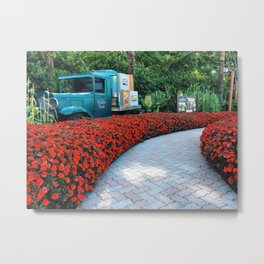 Follow the red flower road Metal Print