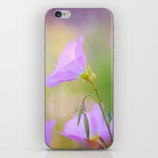 Springly iPhone & iPod Skin