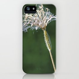 The Slow Journey iPhone Case
