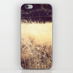 Wheat iPhone & iPod Skin
