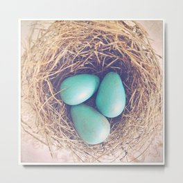 Blue Eggs Metal Print