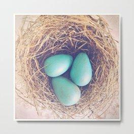Blue Eggs Metal Print