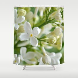 Spring 041 Shower Curtain