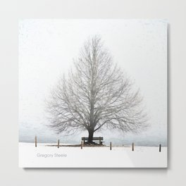 Linden Tree Metal Print