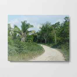 What's Around the Bend? Metal Print