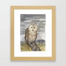 owl on a old fence post, karla hall Framed Art Print