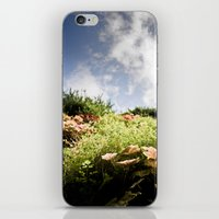fairy tale iPhone & iPod Skins featuring Fairy Tale by Tom Radenz