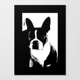 Boston Terrier Love Canvas Print