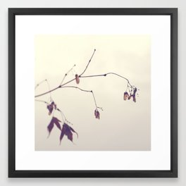 twigs and dew Framed Art Print