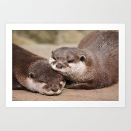 Otters 1 Art Print